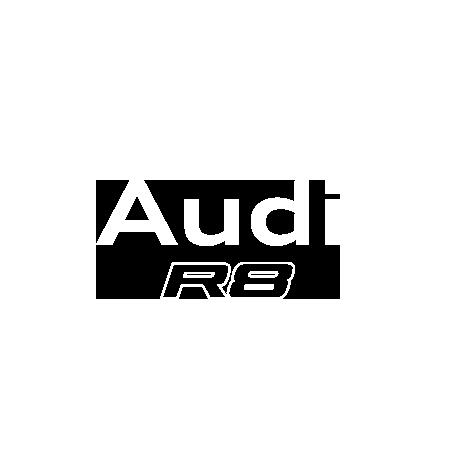 AudiR8-450x450